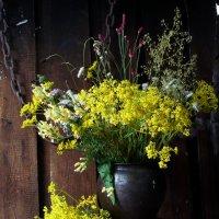 Полевые цветы :: Виктория