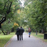 """""""Осень  жизни  ,как  и  осень  года , надо  не  скорбя  благословить ! :: Виталий Селиванов"""