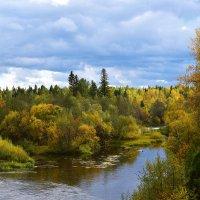 На реке Каква. :: Наталья