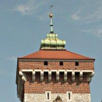 Флорианские ворота, Краков :: Galina Belugina