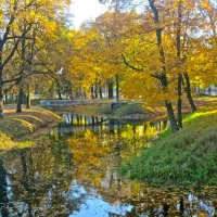 золотая осень :: Елена