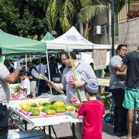 Праздник Суккот :: Aleks Ben Israel