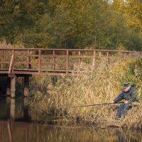 Ловись рыбка большая и маленькая :: Борис Гольдберг