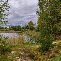 Осеннее озеро :: Андрей Дворников
