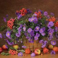 Яркие краски осени. :: alfina