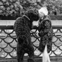Это любовь! :: Александр Степовой