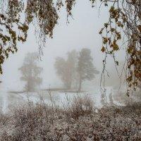Снежная осень. :: Марина Фомина.