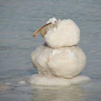 Снеговик-солевик! :: Герович Лилия