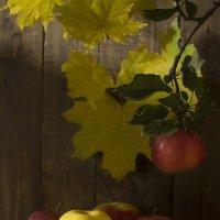 Вкус осенних яблок :: Валерий Хинаки