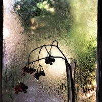 Осенние слёзы :: veilins veilins