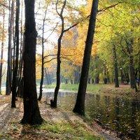 осень разных лет :: tatiana