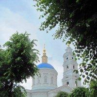 Купола :: Татьяна Овчинникова