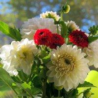 Букет цветов осенних.. :: Андрей Заломленков