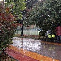 В городе дождь... :: Людмила