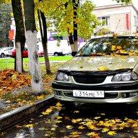 Автомобиль и Осень. :: Михаил Столяров