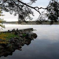 Осенний пейзаж. :: Николай Тренин