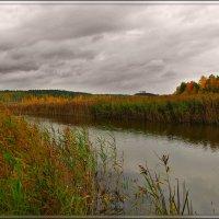 Осень :: Михаил Цегалко
