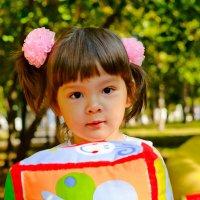 осенний портрет :: надежда Коновалова