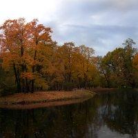 осень в парке :: Елена Маковоз