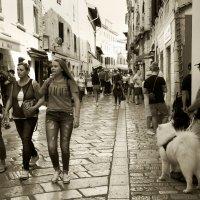 Прогулки по городу. Пореч.Хорватия. :: Николай Ярёменко