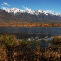 Енгаргинское озеро в Тункинской долине... :: Александр Попов