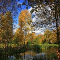 Осень в Ботаническом саду. (1) :: Николай Кондаков