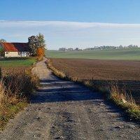 Дорога к деревне :: donat
