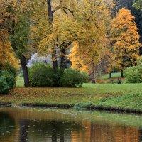 Золотая осень в Павловском парке :: Ирина Румянцева