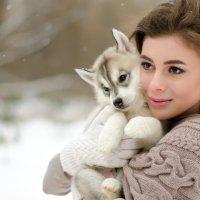 Девушка с хаски :: Анна Карпенко
