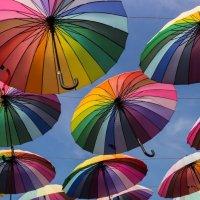 зонты :: Roamer Pon