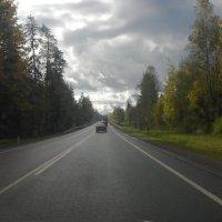 Осень под Питером. 7 октября :: Viktor
