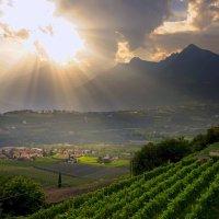 Серенада солнечной долины :: Ирина