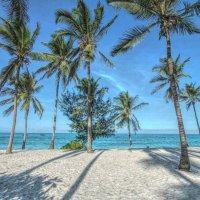 Утро на пляже! :: Натали Пам