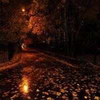 Осенний вечер :: Андрей Лукьянов