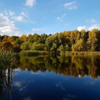 Взглянула Осень в зеркало пруда... :: Ольга Русанова (olg-rusanowa2010)