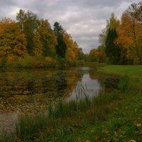 Краски Осени :: Наталья