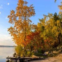 Осенний фрегат. Фото с прозрачной атмосферой :: Наталья Чистополова