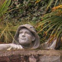 Лезет в сад через забор! :: Natalia Harries
