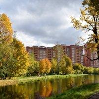осень :: tatiana