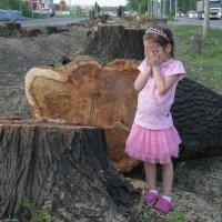 когда деревья были большими :: Марат Номад