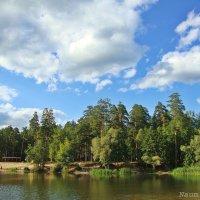 Бегут по небу облака :: Лидия (naum.lidiya)