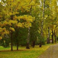 Октябрь и я бродим по парку. И нам нравится! :: Татьяна Помогалова