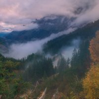 Туман в Альпах :: Максим Гуревич