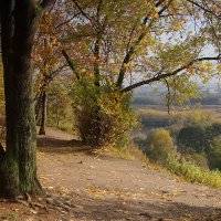 Осень в Коломенском. :: Владимир. Ермаков