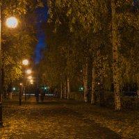 Осень в городе, октябрь :: Владимир Максимов