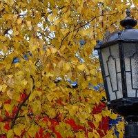 Осень,улица..,фонарь..:)) :: Леонид Балатский