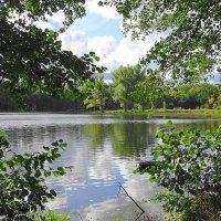 На озере Лесном в октябе :: Маргарита Батырева