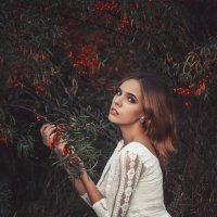 Облепиха :: Ekaterina Vikulina