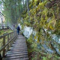 Парк Оленьи ручьи :: Nataliya Belova