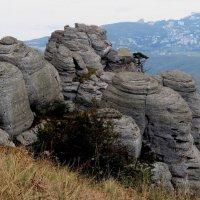 В горах . :: Tatyana